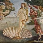 """Botticelli """"Рождение Венеры"""" художник Возрожднения"""