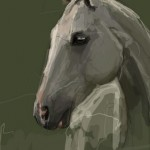Портрет домашнего животного, лошадь